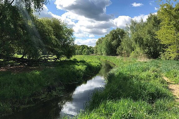 A narrow stream flows through a green field, with a small dirt trail on the right and a blue sky with clouds above.